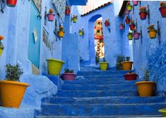 "Ever wondered how Chefchaouen has got the nickname of ""Blue Pearl""? Here are the reasons for you.Don't miss the must visit Chefchaouen attractions. Beautiful Streets, Beautiful Places In The World, Most Beautiful, Beautiful Roads, Beautiful Buildings, Wonderful Places, Blue Shower Curtains, Iceland Waterfalls, Lombard Street"