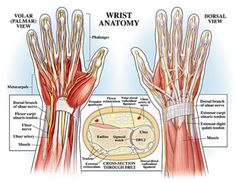 Prevent Yoga Injury: 3 Essential Tips for Protecting Your Wrists in Yoga