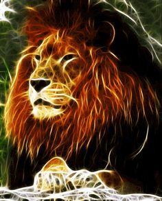 Fractalius Lion Animation 2 by megaossa