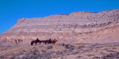 The Red Desert Is A Startling Wasteland In Wyoming That's Visible From Space Alaska Cruise, Alaska Travel, Rv Travel, Grand Teton National, Yellowstone National Park, National Parks, Wyoming Vacation, Tennessee Vacation