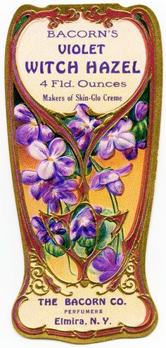 vintage perfume label, bacorn's violet witch hazel, old fashioned beauty label, purple flowers, antique perfume graphics