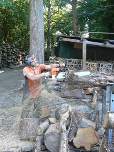 Well the Wood Yard has been a hive of activity preparing for the winter season, making sure we have enough seasoned Logs in stock ready for our customers this winter. Last winter seemed to last forever, but we are prepared.