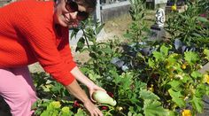 Au cimetière de la Bouteillerie, la plasticienne nantaise Gaëlle Le Guillou a installé un potager hors-sol sur sa concession.