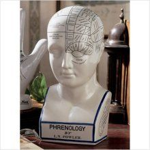 Phrenological Head. What do the bumps tell you?