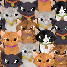 Daily Pattern: Kitten Excitement.