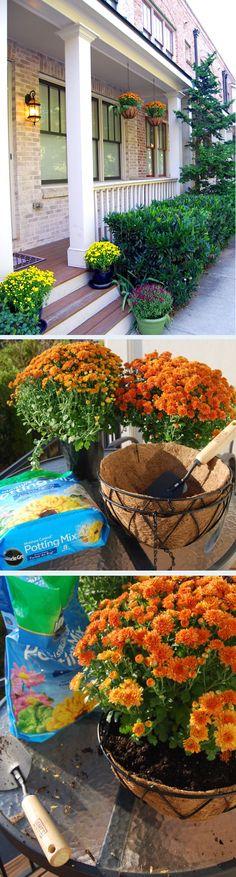 DIY Fall Porch Decor: Mum Hanging Baskets | The Home Depot Community