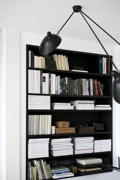monochromatic book shelves
