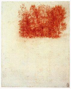 Leonardo da Vinci, A Copse of Trees; 1502