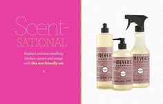 Meyers Cleaning Supplies--  Smells great.  Naturally!  10 stylish cleaning tools | Gallery | Glo