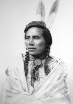 Crow Scout