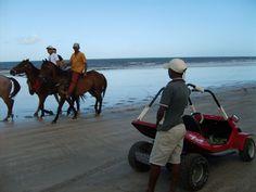 Minibugue e cavalos, duas opções de passeios na orla da praia de Maragogi, estado de Alagoas, Brasil.  Fotografia: Cris Gutkoski / UOL.