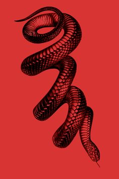 Single background shape color built up with highlight form and defining dark. Not for the snake of it. Mises En Page Design Graphique, Art Graphique, Diy Tattoo, Snake Art, Tattoo Style, Red Aesthetic, Grafik Design, Wall Collage, Tattoo Images
