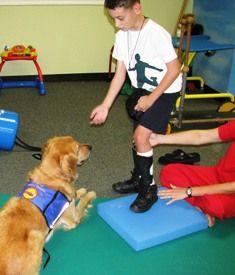 The motivator  #service #dog, dogs are amazing