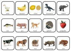 Learn Swedish, Swedish Language, English Vocabulary, Montessori, Dog Food Recipes, Former, Experiment, Kindergarten, Kids