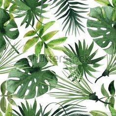 Картинки по запросу тропики в пинтересте