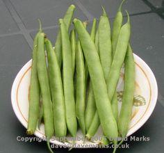 Freezing fresh veggies
