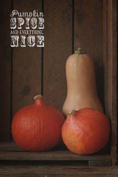 #Pumpkin Puree And Pumpkin Pie Spice @yumlaut.de