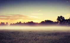 morning mist - 26/09/2015