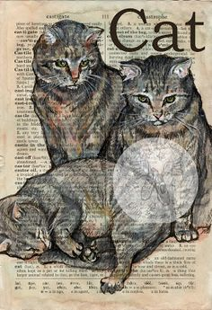 Cat - Mixed Media Drawing on Distressed, Dictionary Page Commission Pet Portrait - Flying Shoes Art Studio