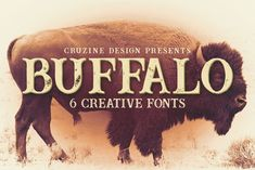 Buffalo Inline 2 Grunge Font – Deeezy – Freebies with Extended License Retro Vintage, Vintage Fonts, Vintage Branding, Creative Fonts, Cool Fonts, New Fonts, Pretty Fonts, Beautiful Fonts, Grunge Style