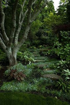Inspirational 24 Woodland Garden Design www. - Gartengestatung Inspirational 24 Woodland Garden Design www. family gardens are ., While age-old throughout principle, the actual pergola.