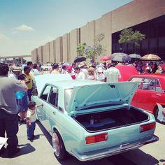 Datsun 510, Edd, Volkswagen, Instagram
