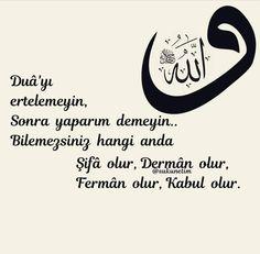 Slogan, Pray, Words, Life, Istanbul, Canvas, Horse