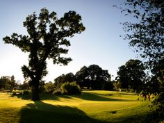 Our Cromwell Course is a set amid stunning scenery. #NailcoteHall #Par3 #Golf