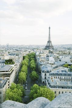 A Parisian avenue with lovely green trees and the Eiffel Tower in the background.