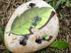 ants eating a leaf - realistic painting on a rock - beautiful rock art.