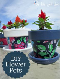 DIY Flower Pots - Need to add some color to your flower pots? Such a simple DIY project! theblueeyeddove.com