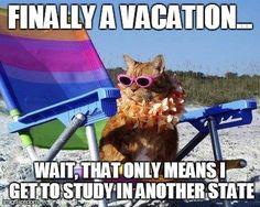 Vacation? What is vacation? #Nursing #NursingStudent