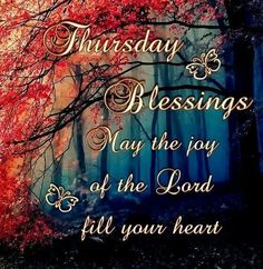 ❤️Thursday Blessings!❤️Nehemiah 8:10b ...for the joy of The Lord is your strength.❤️