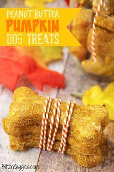 Peanut Butter Pumpkin Dog Treats - A crunchy treat made of pumpkin and peanut butter, perfect for your loving fur babies!