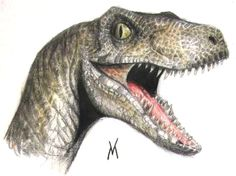 Painting Reference  realistic velociraptor - Google Search