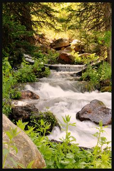 A stream flowing down from Tony Grove Lake in Logan Canyon, UT.