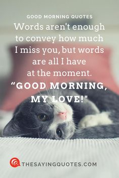14. Words arent enough to convey how much I miss you but words are all I have at the moment. Good morning my love