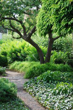 shade garden for far left or far right of property eventually