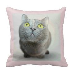 """Cute gray cat with big green eyes on pink decorator pillow.  16""""x16"""" , 20""""x20"""", 13""""x21"""".  http://www.zazzle.com/littlethingsdesigns?rf=238200194340614103"""