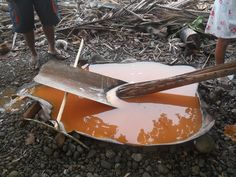 Making Sago - Kairiru Island, Papua New Guinea