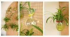 diy-plantes-pot