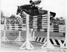 stretch ... show jumping in the good ol' days  Robert Ridland #omg #horses