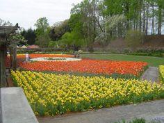 Biltmore Estate, Vineyard, Places To Visit, Sidewalk, Outdoor, Photos, Vine Yard, Walkway, Outdoors