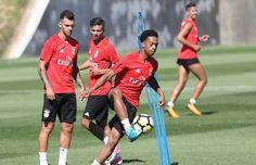 Willock entraînement Benfica