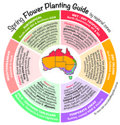Spring Herb, Fruit & Vegies Planting Guide by temperate zones Australia. For mo… Spring Herb, Fruit & Vegies Planting Guide by temperate zones Australia. For more www. Vegetable Planting Guide, Planting Vegetables, Veggies, Companion Planting, Veg Garden, Edible Garden, Veggie Gardens, Garden Cart, Garden Tips