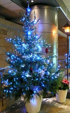 blue Christmas-be good at Coldwell Banker Ruth Holloway Realty office!! Blue be CB color!
