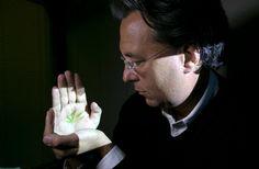 Seeking the Facts on Medical Marijuana - NYTimes.com