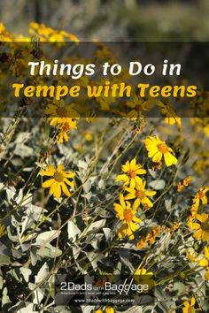 Things to Do in Tempe with Teens - 2 Dads with Baggage
