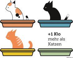 Idealerweise stellt man Katzen immer ein Klo mehr zur Verfügung, als Katzen da sind, weil manche Katze ihr Geschäft gerne trennen.