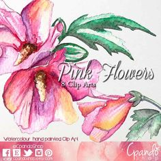 Pink flowers watercolor clip art, png, frames, background, for invitations, wedding, vintage, spring, romantic graphics, babyshower, art.